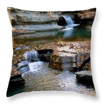 Autumnal Pool Throw Pillow