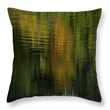 Autumnal Reflections Throw Pillow
