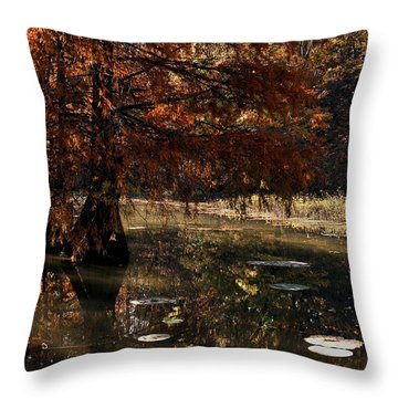 Throw Pillow featuring the photograph Autumnal Solace At Lake Murray by Tamyra Ayles