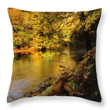Autumnal Tamar River Devon Throw Pillow