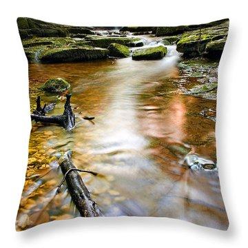 Autumnal Waterfall Throw Pillow