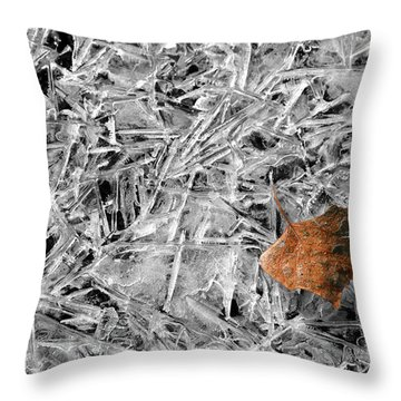 Throw Pillow featuring the photograph Autumn's End by Marie Leslie