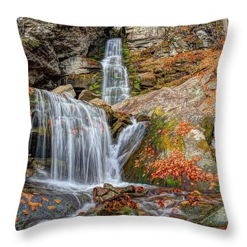Autumns End Throw Pillow