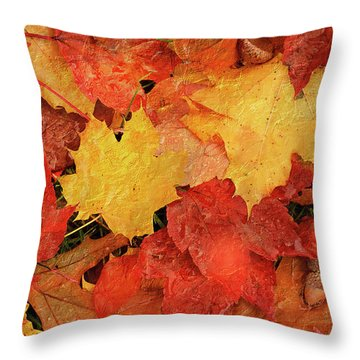 Autumns Gifts Throw Pillow