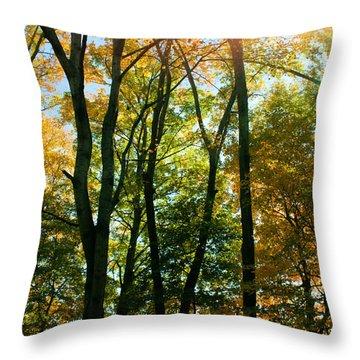 Autumns Glory Throw Pillow