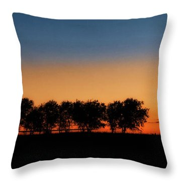 Autumn's Golden Glow Throw Pillow