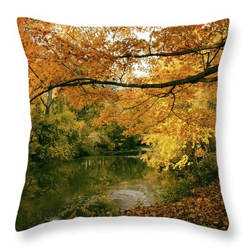 Throw Pillow featuring the photograph Autumn's Golden Tones by Jessica Jenney
