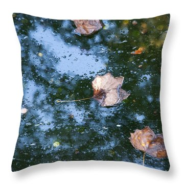 Autumn's Here Throw Pillow by Allen Carroll