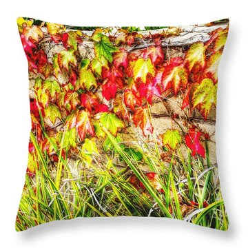 Autumn's Kiss Throw Pillow