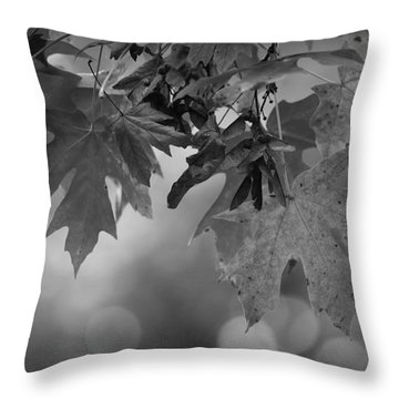 Autumn's Mystery Throw Pillow