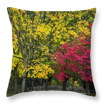 Autumn's Peak Throw Pillow