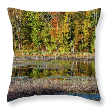 Throw Pillow featuring the photograph Autumns Quiet Moment by Karol Livote