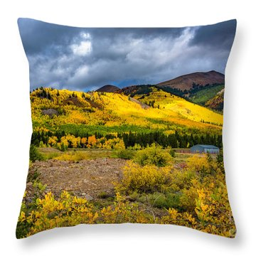 Autumn's Smile Throw Pillow