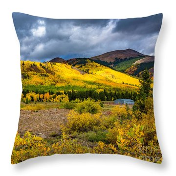 Throw Pillow featuring the photograph Autumn's Smile by Bitter Buffalo Photography