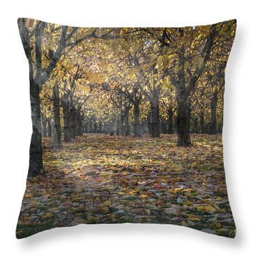 Autumns Strokes Throw Pillow by Bruno Santoro