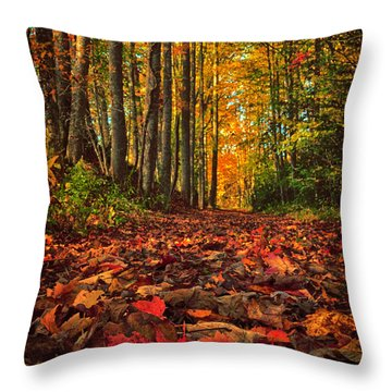 Autumn's Walkway Throw Pillow