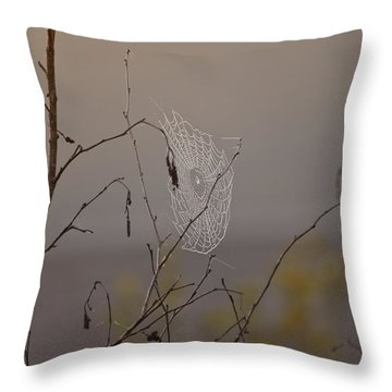 Autumns Web Throw Pillow