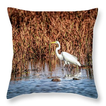 Autumn's Shore Throw Pillow