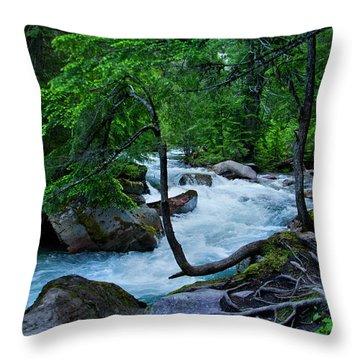 Avalanche Creek Throw Pillow