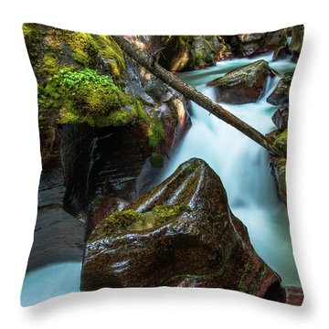 Avalanche Creek Throw Pillow
