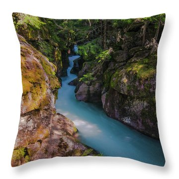 Throw Pillow featuring the photograph Avalanche Gorge 5 by Gary Lengyel