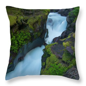 Throw Pillow featuring the photograph Avalanche Gorge 6 by Gary Lengyel