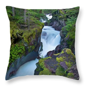 Throw Pillow featuring the photograph Avalanche Gorge 7 by Gary Lengyel