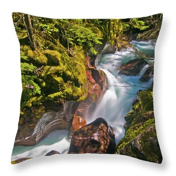 Throw Pillow featuring the photograph Avalanche Gorge by Gary Lengyel
