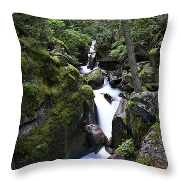 Avalanche Gorge Glacier National Park Throw Pillow