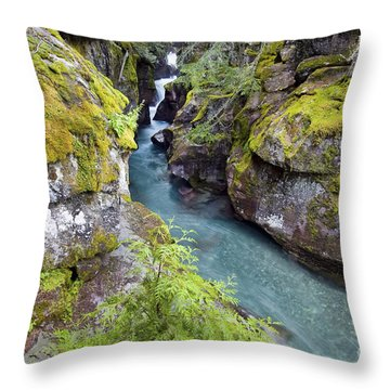 Avalanche Gorge In Glacier National Park Throw Pillow
