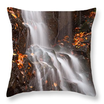 Avalon Falls Throw Pillow by Nicolas Raymond