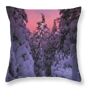 Avalon Sunset Throw Pillow
