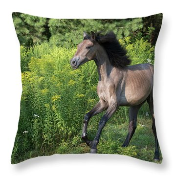 Avante In Action Throw Pillow