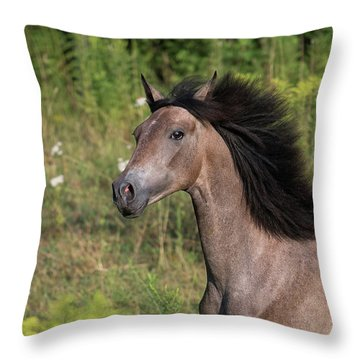 Avante Throw Pillow