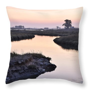 Aveiro Wetlands Throw Pillow by Marek Stepan