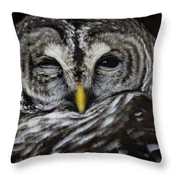 Avery's Owls, No. 11 Throw Pillow