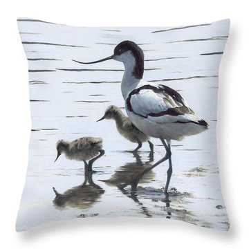 Avocet And Chicks Throw Pillow by Clive Meredith