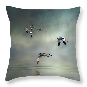 Avocet Dawn Throw Pillow by Brian Tarr