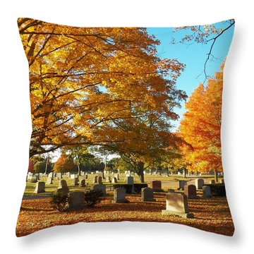 Awaiting Winter's Chill Throw Pillow