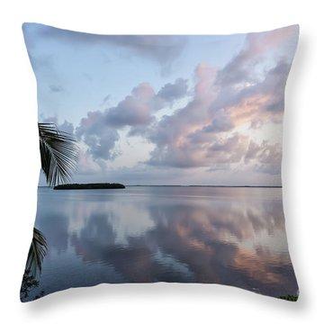 Awakening At Sunrise Throw Pillow