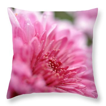Throw Pillow featuring the photograph Awakening by Glenn Gordon