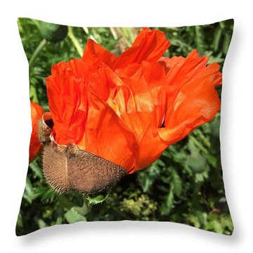 Awakening Poppy Throw Pillow