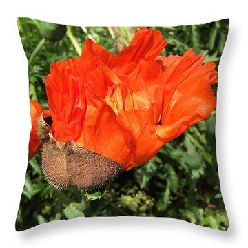 Awakening Poppy Throw Pillow