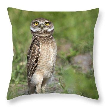 Awareness Throw Pillow