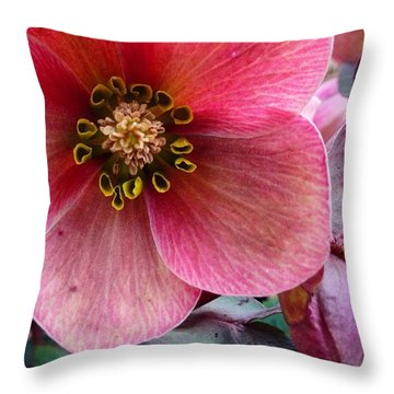 Bloom Throw Pillows