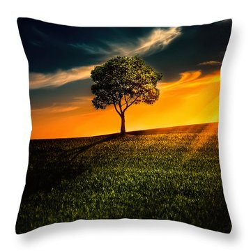 Awesome Solitude II Throw Pillow by Bess Hamiti