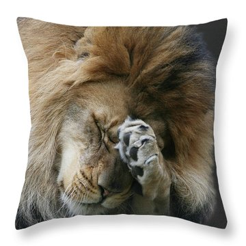 Awwwww.....  V2 Throw Pillow