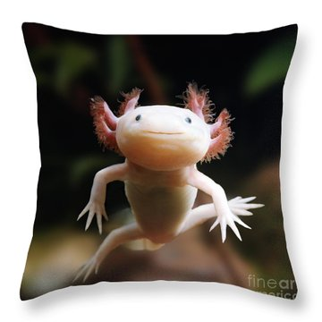 Axolotl Face Throw Pillow