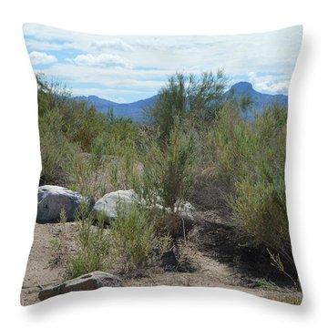 Az Desert Rocks Throw Pillow by Renie Rutten