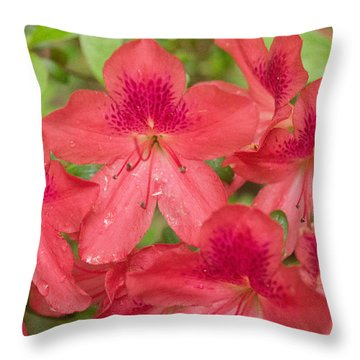 Azalea Blossoms Throw Pillow
